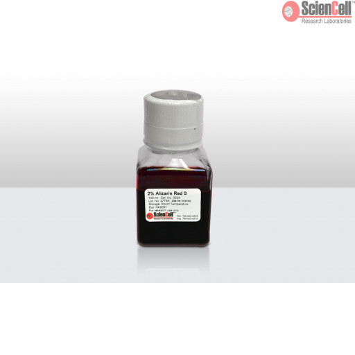 Alizarin Red S Staining Kit