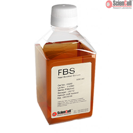 Fetal Bovine Serum, 500 ml