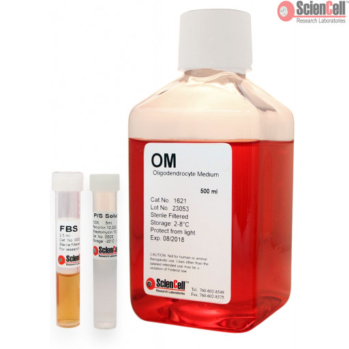 Oligodendrocyte Medium
