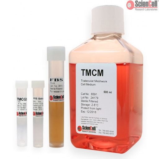 Trabecular Meshwork Cell Medium