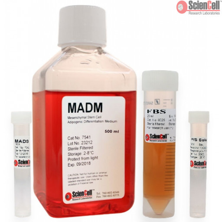 Mesenchymal Stem Cell Adipogenic Differentiation Medium