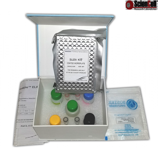 Mouse MMP-3 ELISA Kit