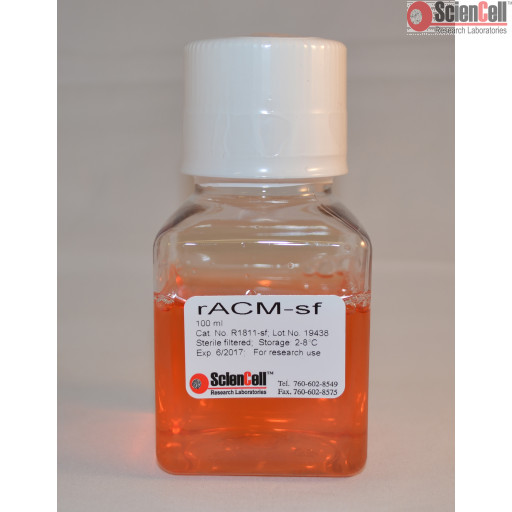 Rat Astrocyte Conditioned Medium-Serum Free