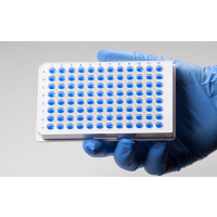 GeneQuery™ Human PD-1/PD-L1 Checkpoint Pathway qPCR Array Kit (GQH-PDI) Catalog #GK121