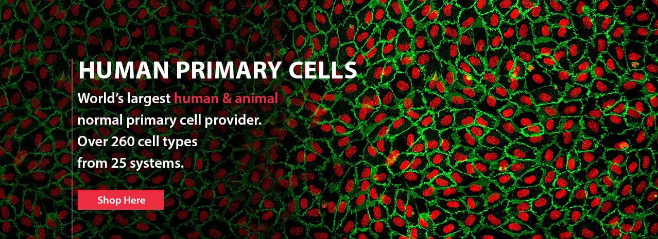 Human Primary Cell's