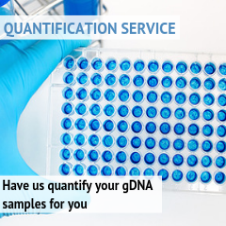 Quantification Service